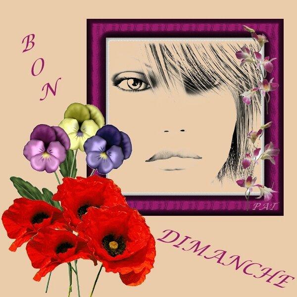 BON DIMANCHE 1
