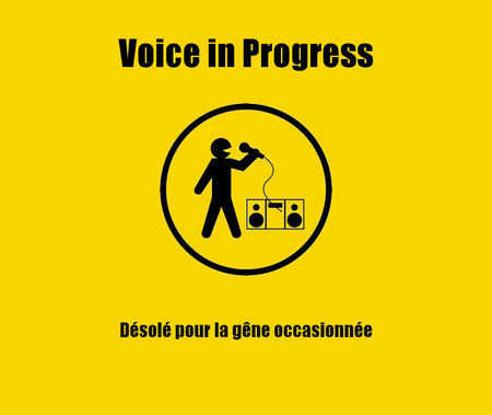 Voice_in_progress_cours_chant_lyon_icone