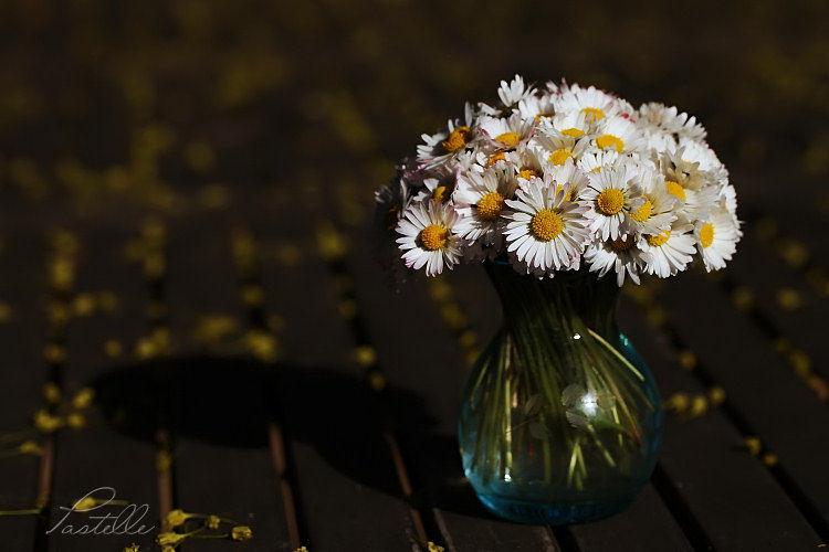 Bouquet_11_05_04_1258