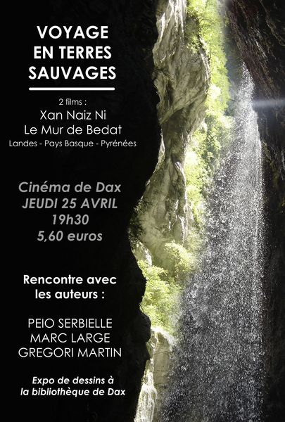 affiche cine