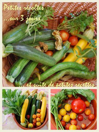 legumes_recettes