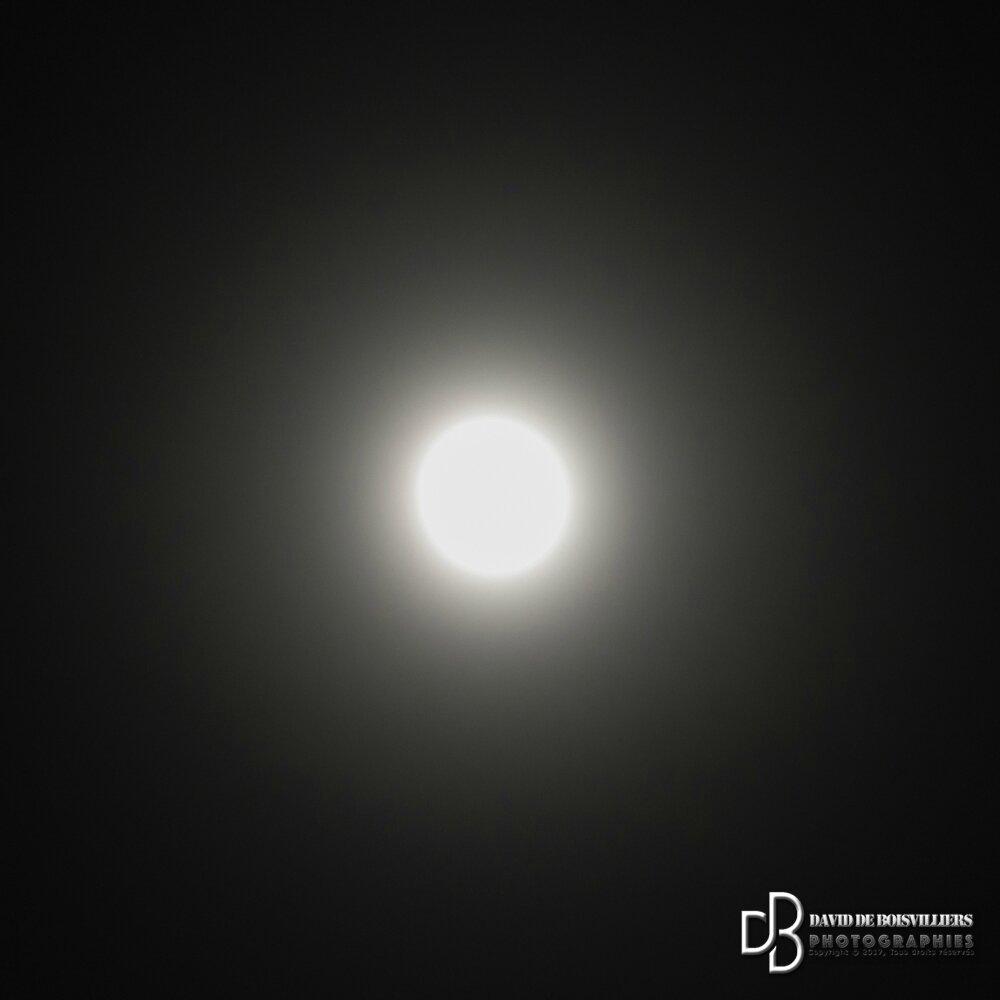 12e édition de la Nuit de la Chouette à DOURDAN en Essonne