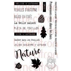 Plaisir_automne-250x250