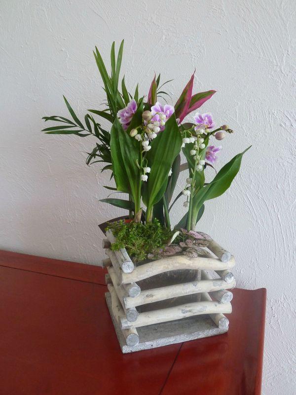 Un meuble et une plante que peut bien faire un lutin for Meuble plante