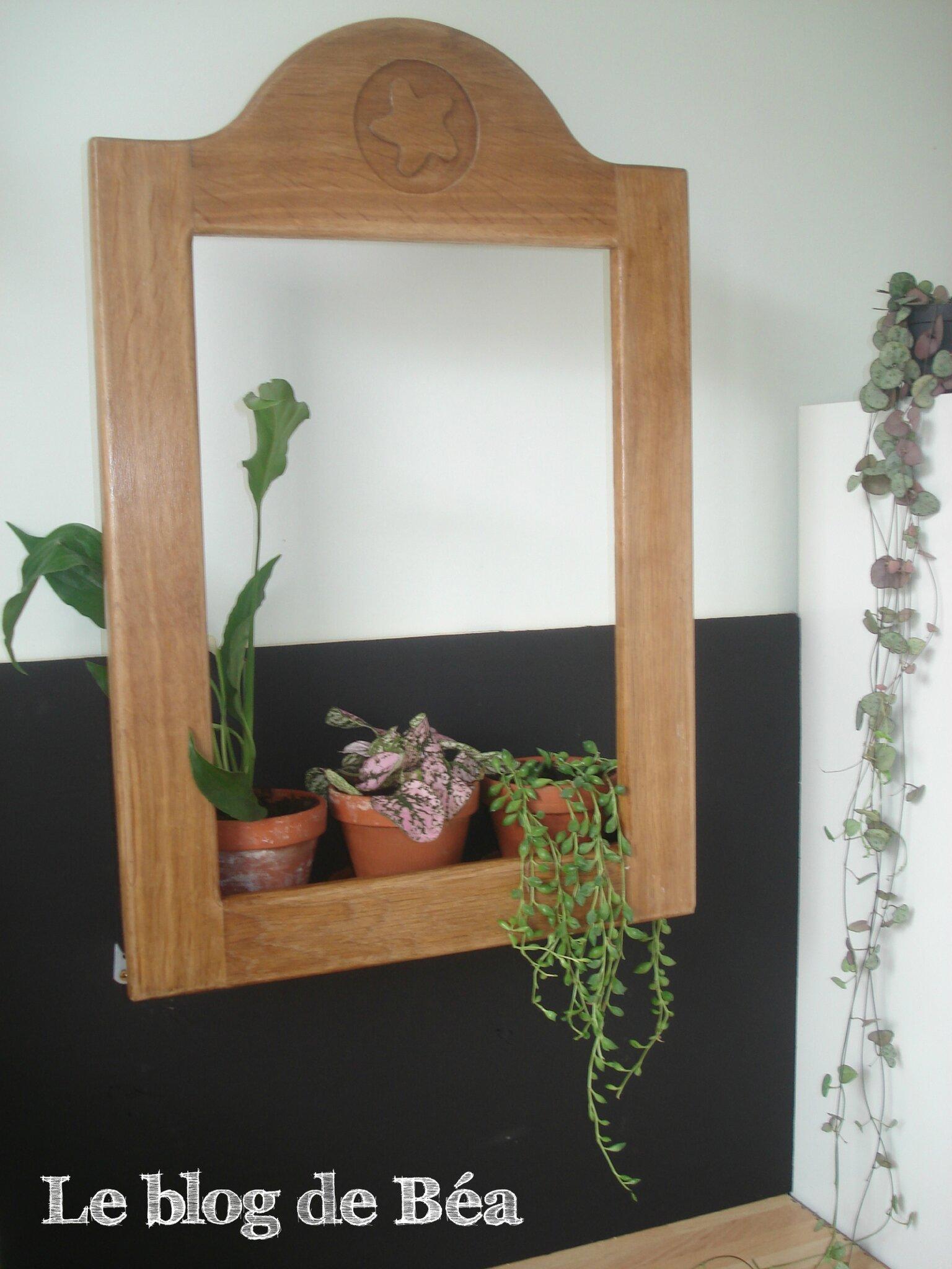 DIY cadre végétal