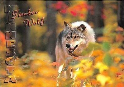 CPM Timberwolf
