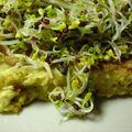 Atelier culinaire au dôme de montmiral vendredi 14 mai 2010 : printemps détox et gourmand : graines germées, agar-agar