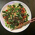 Salade thaï / vietnamienne au boeuf satay de ma maman !