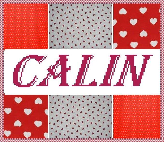 coussin CALIN