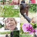 # à la rencontre du printemps #