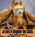 Chat_Empereur