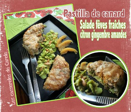 Pastilla de canard (scrap)