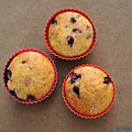 Muffins citron-myrtilles