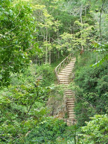 Monastère de Piedra-escaliers