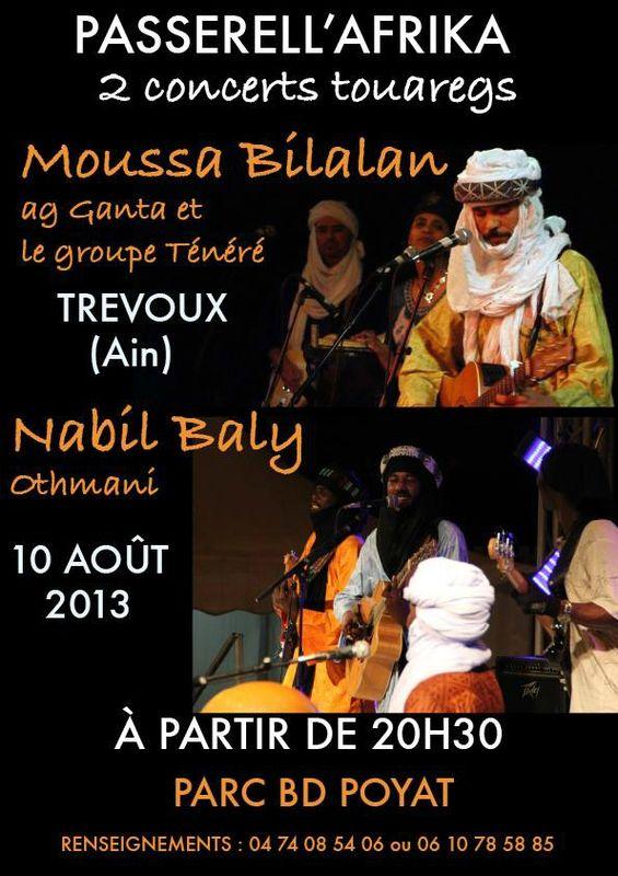 rencontre annuelle de la diaspora touarègue en europe edition 2013