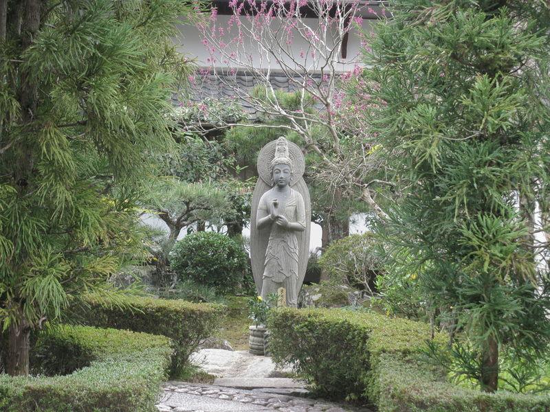 Jardon de Kyoto