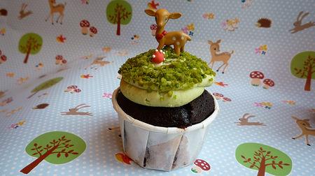cupcake_aceuil1