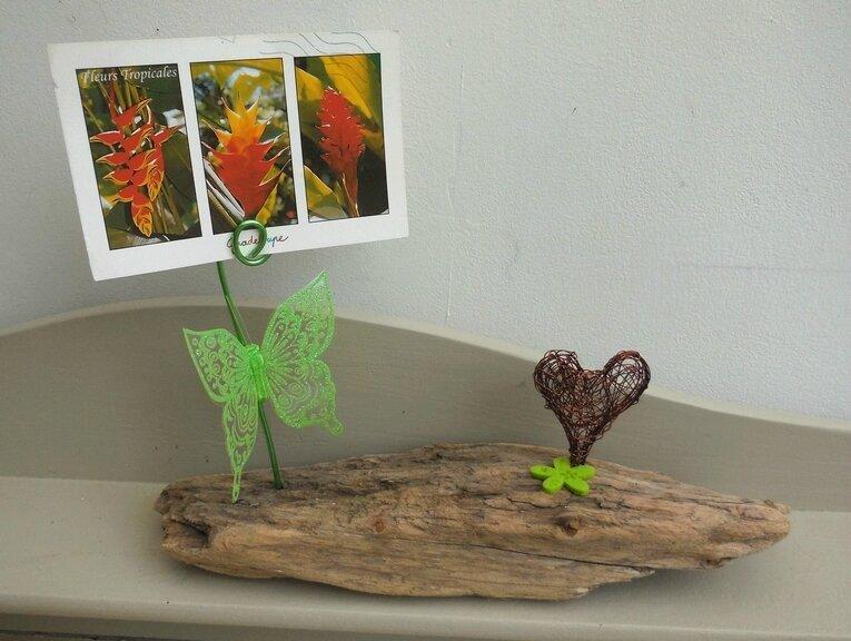 Porte photos en bois flotté/ Driftwood