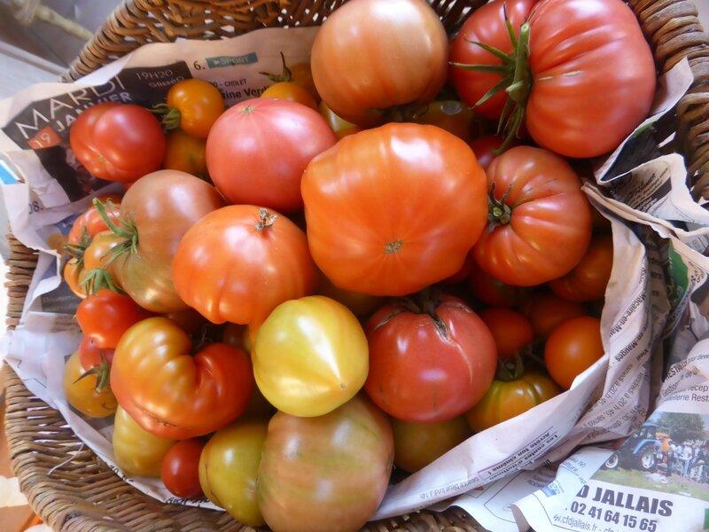 28-tomates (3)