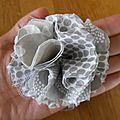 Fleur en tissu pour future broche