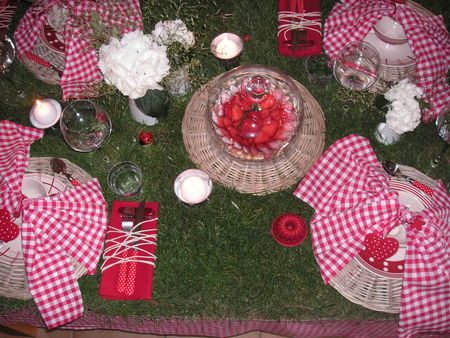 table_picnic_013