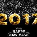 Mes résolutions pour 2017