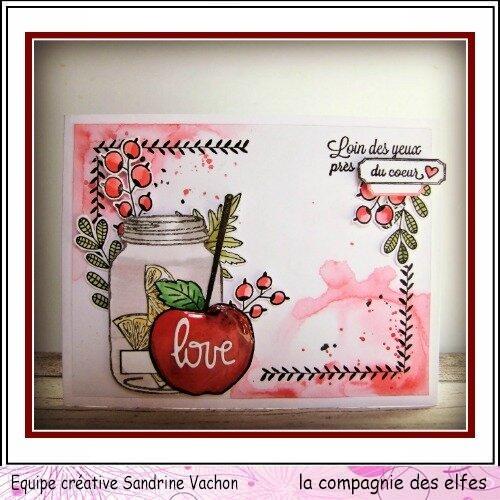 Sandrine_VACHON_f_v_dt_LCDE__1_