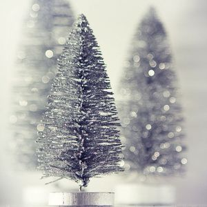 christmas-silver-snow-tree-winter-Favim
