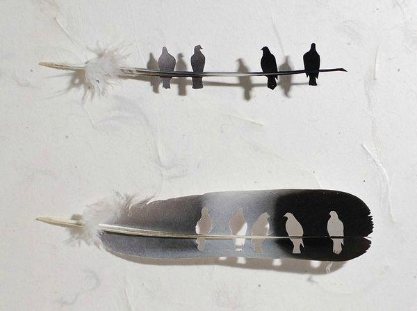 Art-avec-des-plumes-doiseaux-Chris-Maynard-photo-02