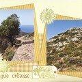 Iles grecques (46) garrigue crêtoise