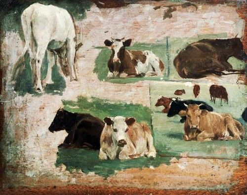 study_of_cows