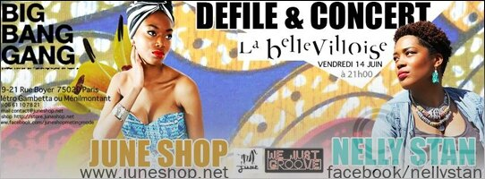 NELLY-STAN-BELLEVILLOISE-WE-JUST-GROOVE_HEADER