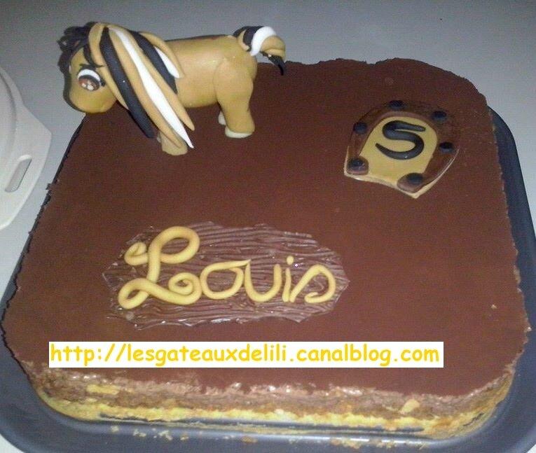 2014 03 10 - poney Louis (1)