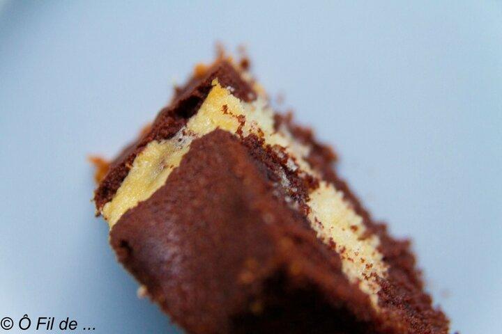 marbré au chocolat 11