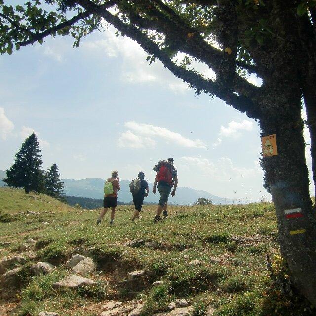 vers les Monts Jura