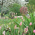 Au jardin début avril