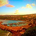 Dellys entre le paysage et la mer - vignes et poissons