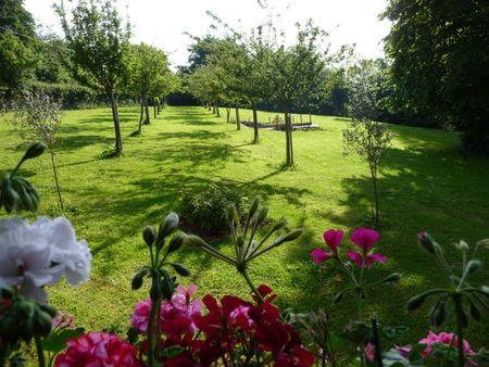jardin_matin_de_mai2009