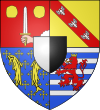 Réunion amicale de la section MOSELLE