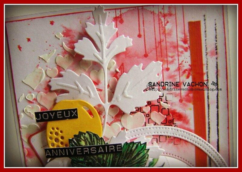 Sandrine VACHON DT PCC (2)