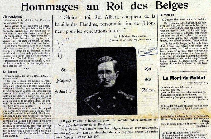 hommage roi des belges1
