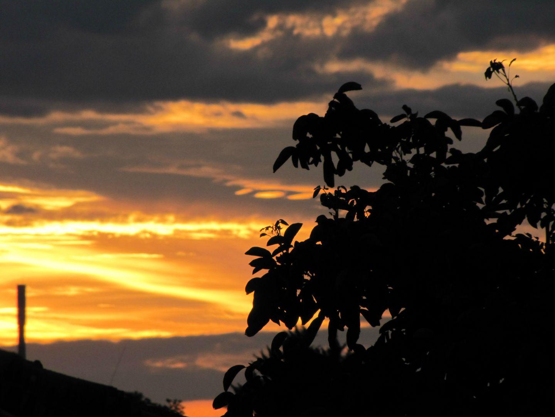 ciels contre jours h1080 mo2 (6)