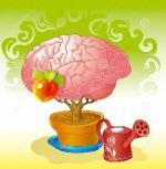 cerveau-arbre-300x306