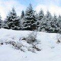 De la neige à noel