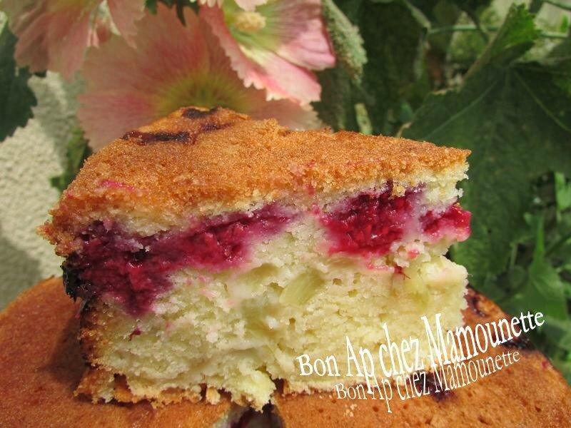 gâteau aux framboises et rhubarbe du jardin 028