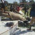 Burkina faso: l'association 'survie' demande à la france de lâcher officiellement son vieil allié blaise compaoré!