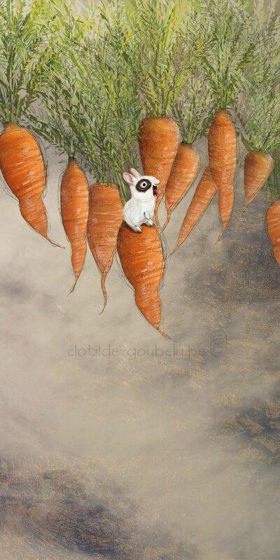 lapin-carottes-entier