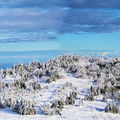 paysages stephanois