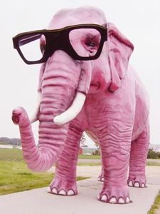 Elephant_rose_lunette