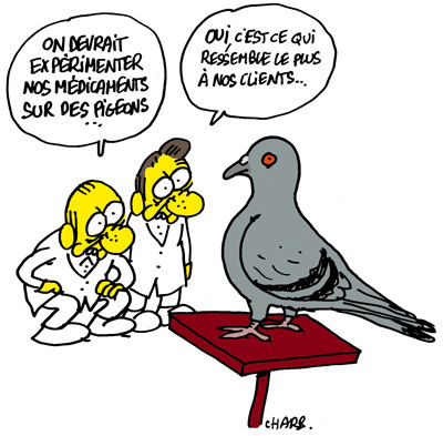 963_experimentation_charb